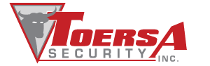 TOERSA Security Logo